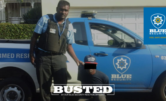 CCTV operator busts Musgrave thief