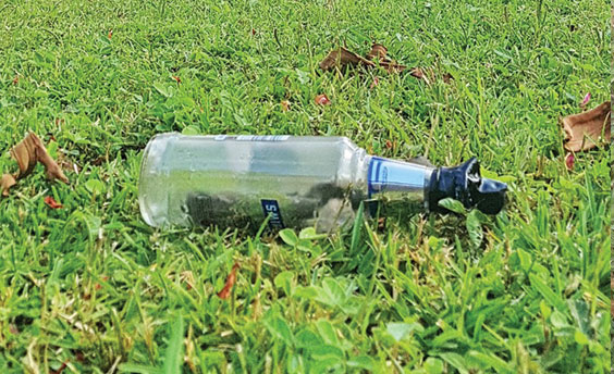 Westville resident finds mysterious Molotov Cocktail in garden