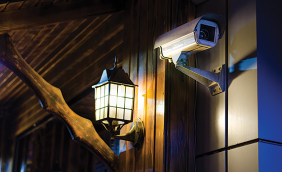 Outdoor lighting and CCTV camera