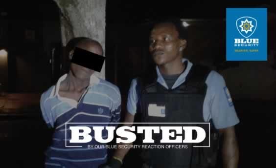 Morningside suspect arrested