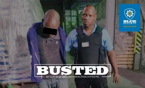 CCTV cameras lead to arrest of suspect hiding at Umbilo business