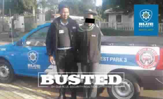 Hillcrest Park Arrest