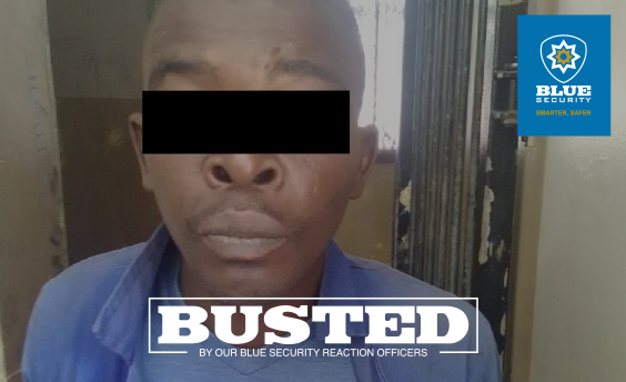 Toti Tactical force catches thief and recovers property