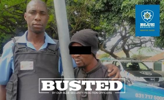 Seven housebreakers arrested over past three days