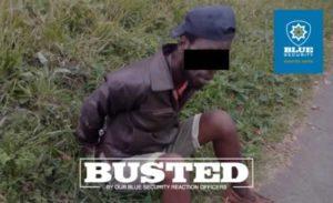 Yellowwood Park Copper Thief Cuffed